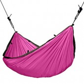 Colibri Single, fuchsia